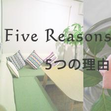 5reasons 5つの理由